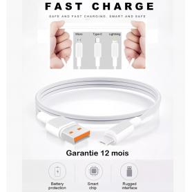 Câble Renforcé en Vrac Fast Charging 2,4A En Sécurité Garantie 12 Mois - Lightning/Type C/Micro USB